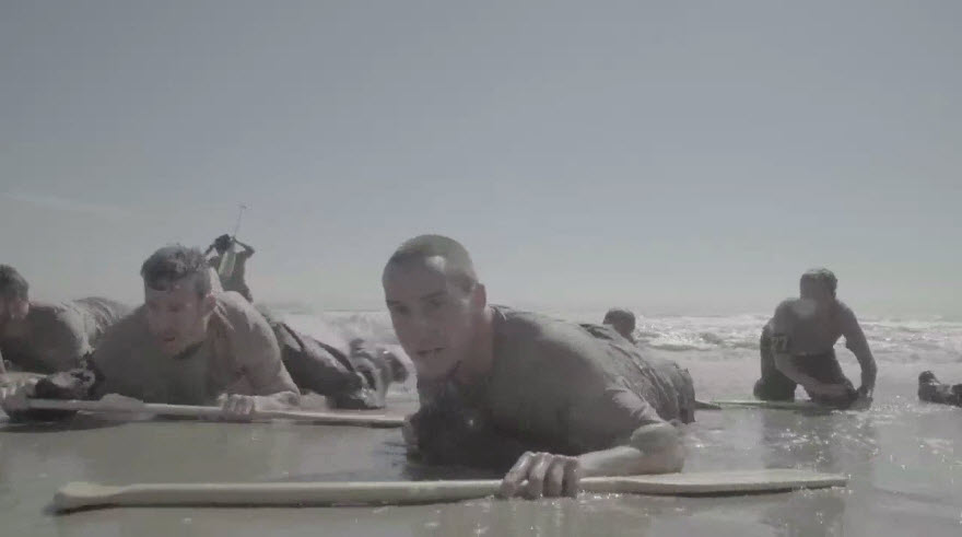 The Selection - Beach Crawl