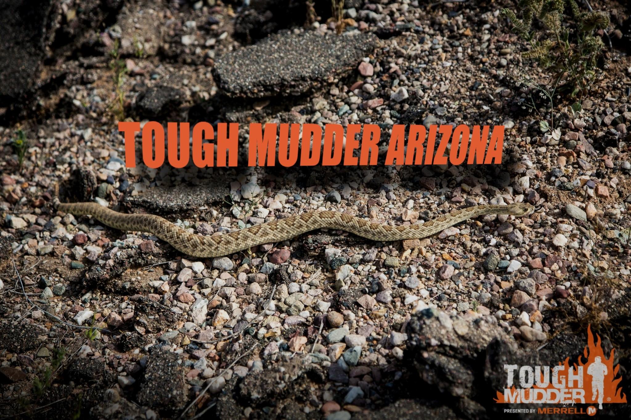 Tough Mudder Arizona
